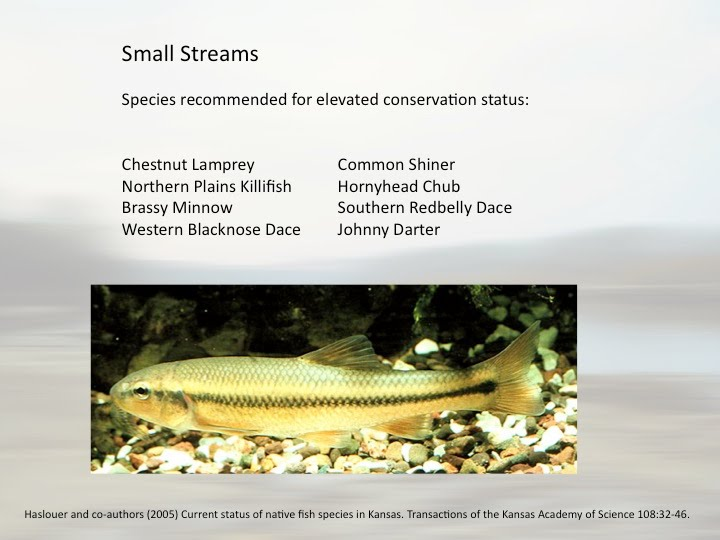 Fish Conservation Friends Of The Kaw